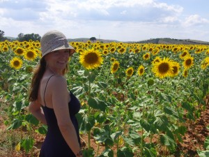 Sunflowers on the ride from Seville to Montecorto